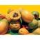 Papayas Caricol 100% Natural
